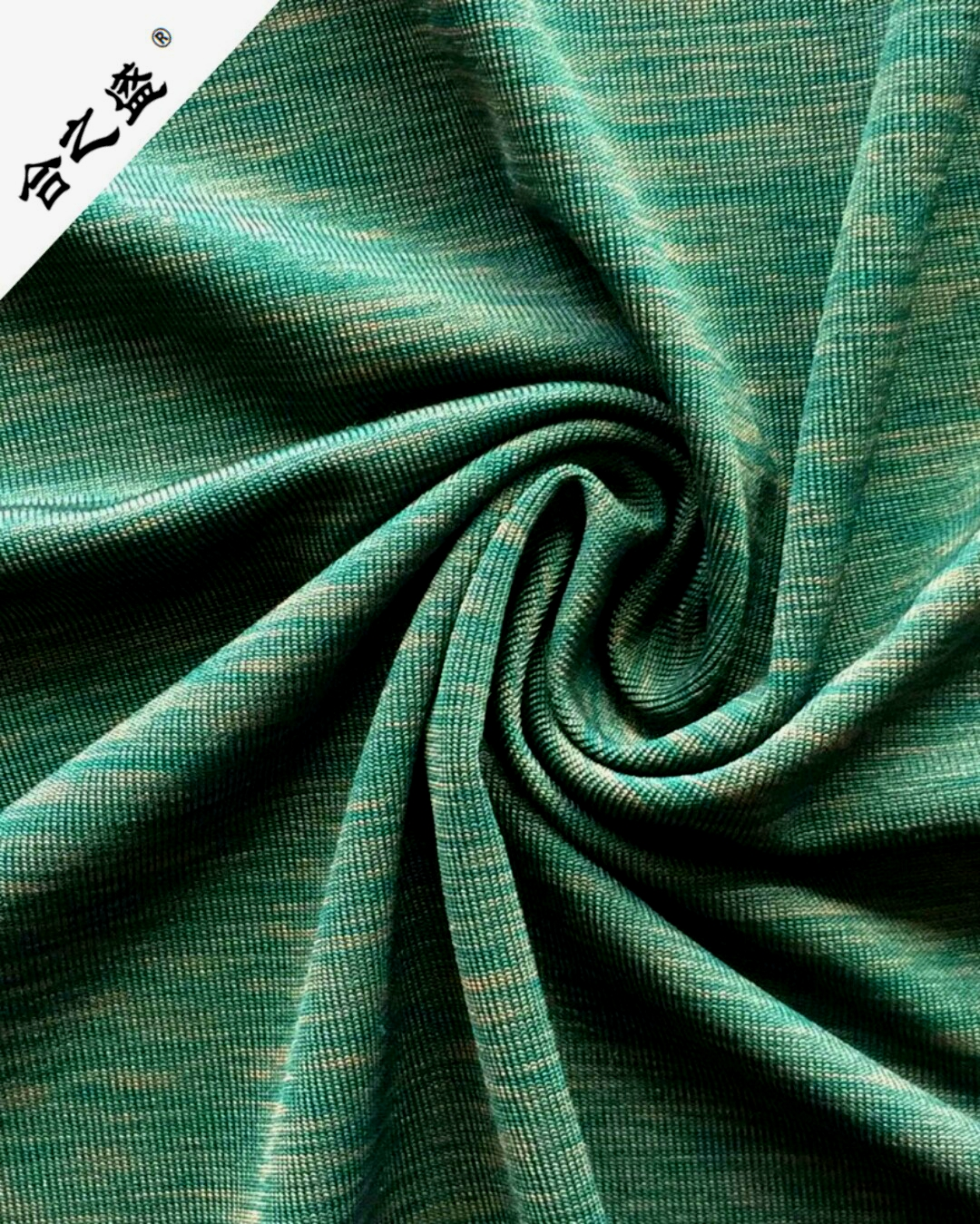 polyester cationic sport jersey fabric